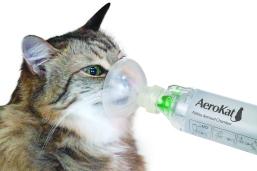 aerokat-in-use-2
